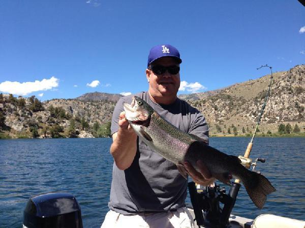 gull lake fish report june lake ca mono county