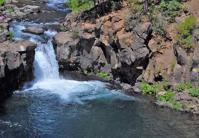 Mccloud river fish report ca siskiyou county for Falls lake fishing report