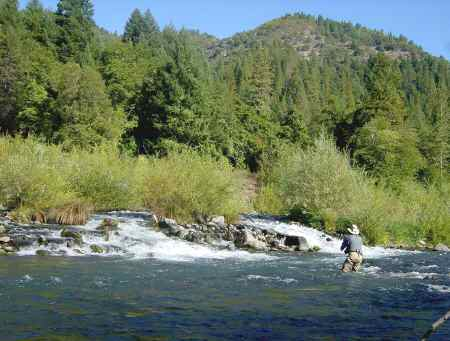 Pit river fish report ca modoc county for Best fishing time today