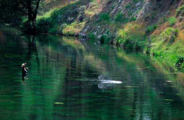 Hat creek fish report ca shasta county for Delta fishing spots