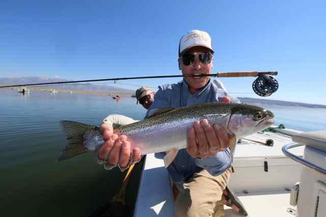 Crowley lake fish report mammoth lakes ca mono county for Trinity bay fishing report