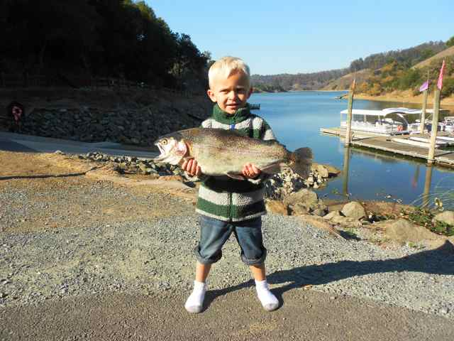 Lake chabot fish report castro valley ca alameda county for Trinity bay fishing report