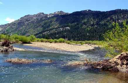 Walker river west section 2 fish report walker ca for Topaz lake fishing