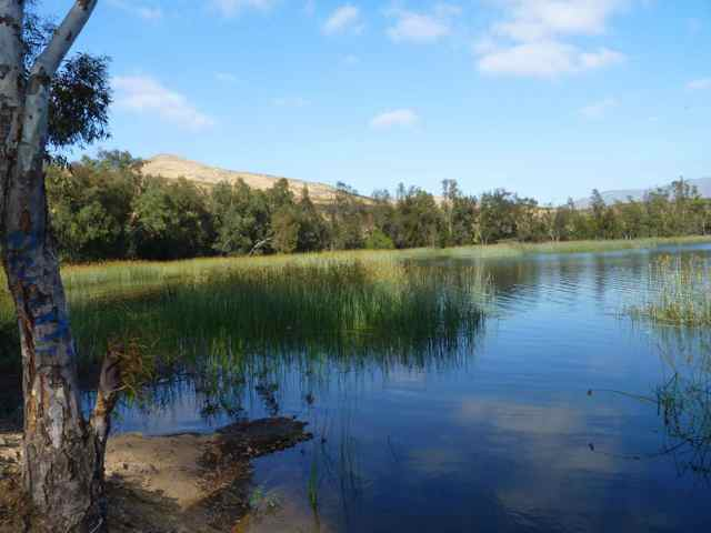 Upper otay reservoir upper otay reservoir fish report for Fishing lakes in san diego