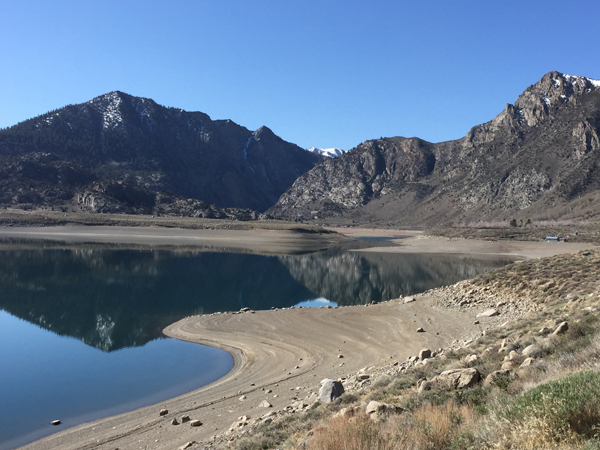 Grant Lake Fish Report June Lake Ca Mono County