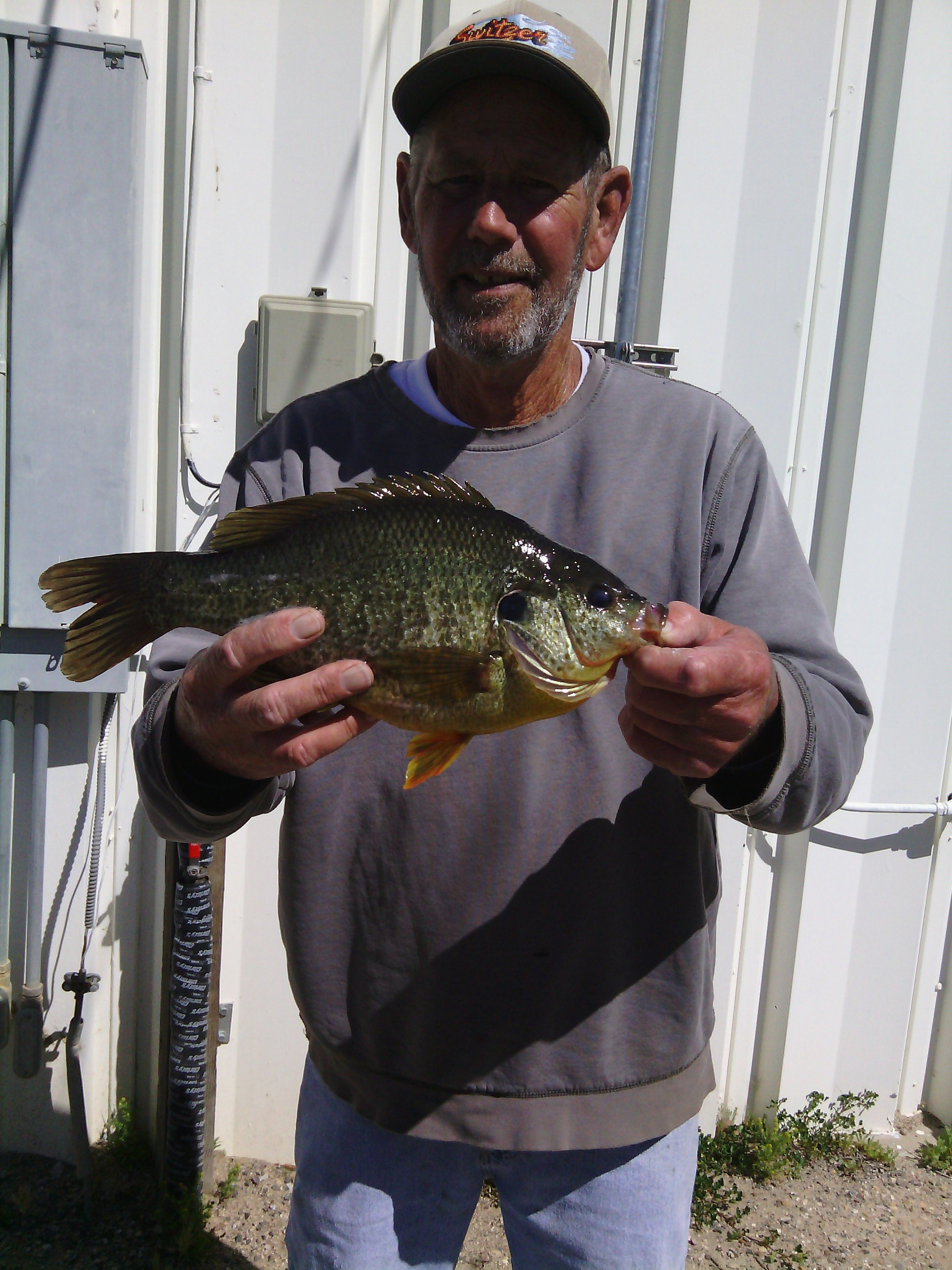 Santa margarita lake fish report ca san luis obispo county for Freshwater fishing in southern california
