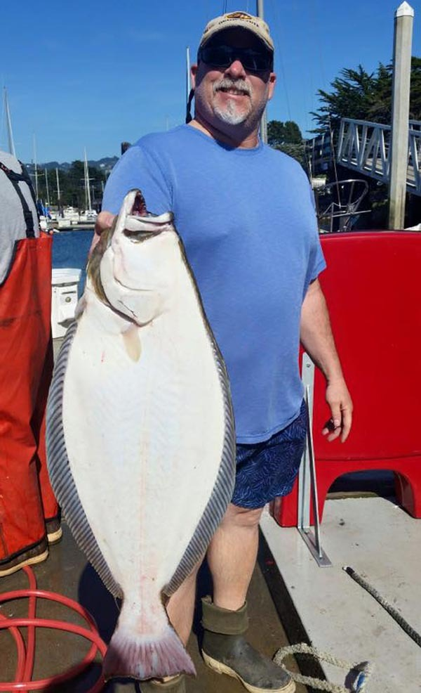California halibut counts by boat april 17 2016 for Sf bay halibut fishing