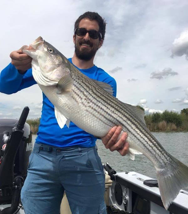 Sacramento delta fish report for Lopez lake fishing report