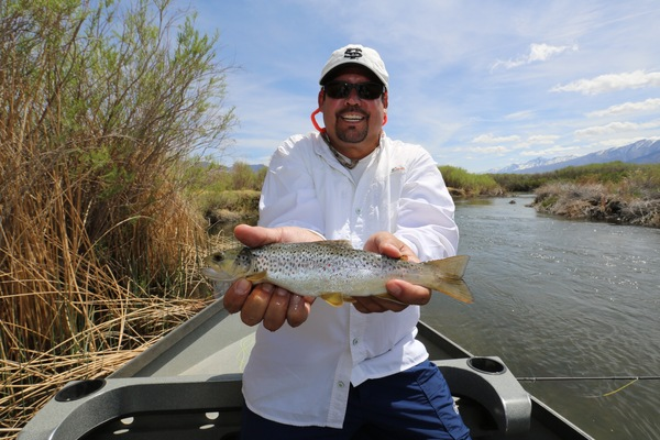 Owens river middle fish report bishop ca inyo county for Bishop fishing report