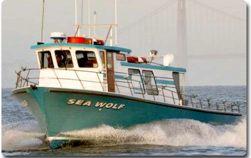 Lingcod counts by boat may 7 2016 for Oxnard fish count