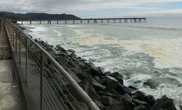Pacifica pier surf report for Pacifica pier fishing report