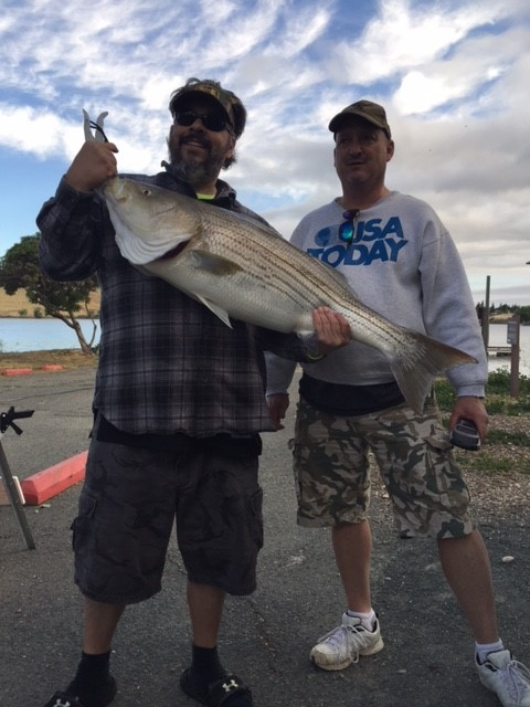 Contra Loma Reservoir Fish Report