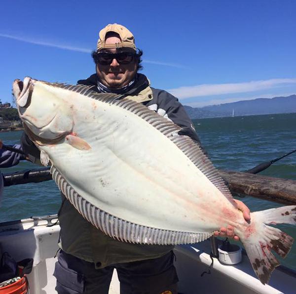 California halibut counts by boat june 26 2016 for California halibut fishing