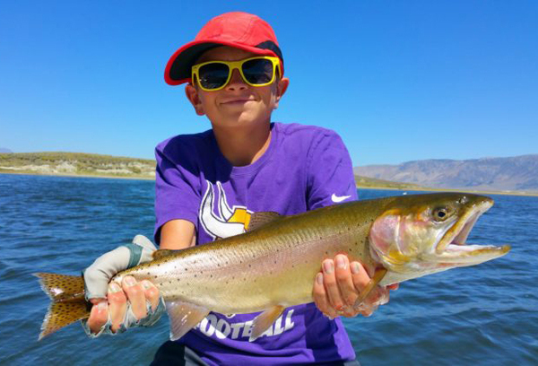 Crowley lake fish report mammoth lakes ca mono county for Fish stocking ca