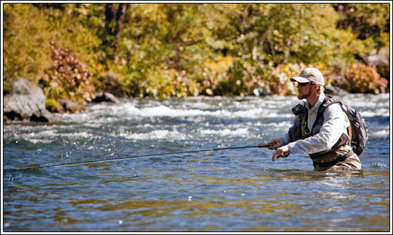 Mccloud river fish report ca siskiyou county for Cherry creek reservoir fishing