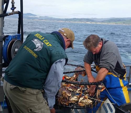 Martins beach fish report half moon bay ca san mateo for Half moon bay fishing report