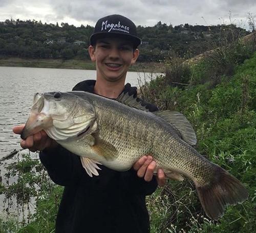 Anderson reservoir fish report morgan hill ca santa for Bass lake ca fishing