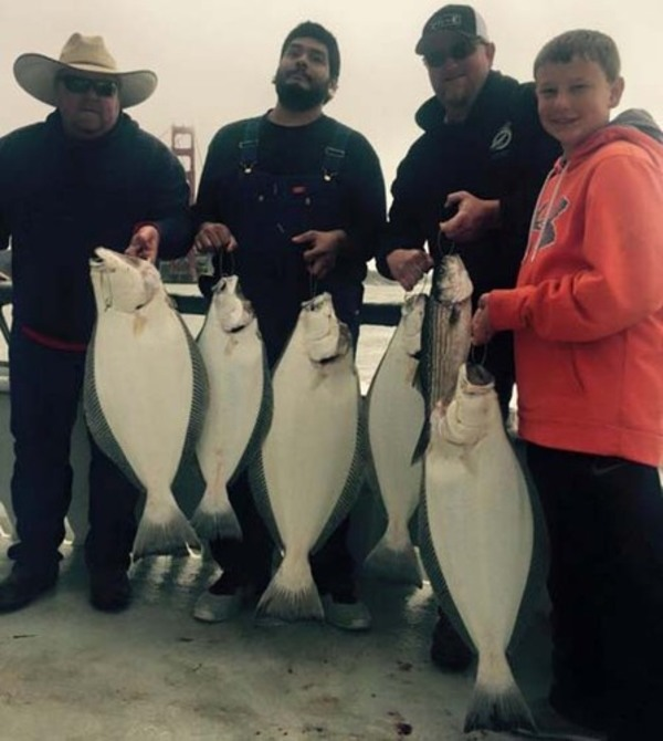 Marin coast and sf bay fish report marin county for Sfbay fishing report