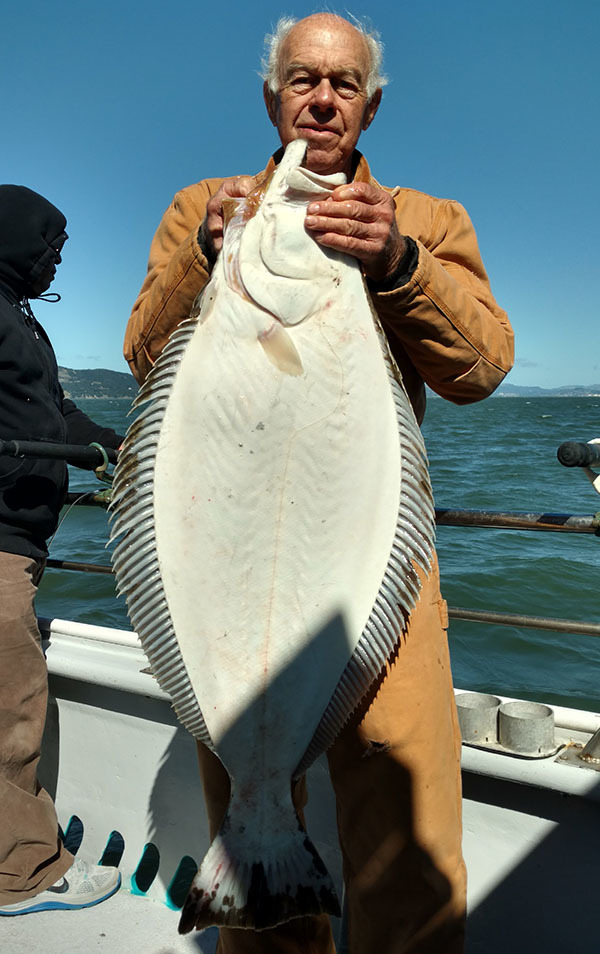 Fish emeryville fish counts for Sf bay halibut fishing