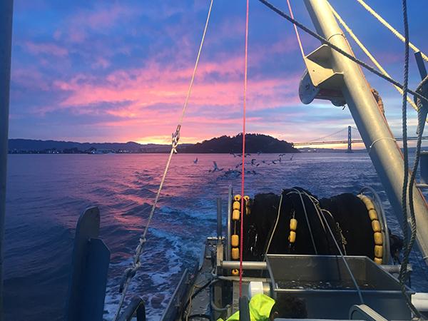 Fishermans wharf fish report san francisco ca san for Sfbay fishing report