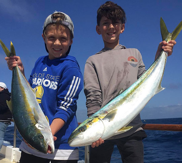 California yellowtail counts by boat april 8 2017 for San diego fish report