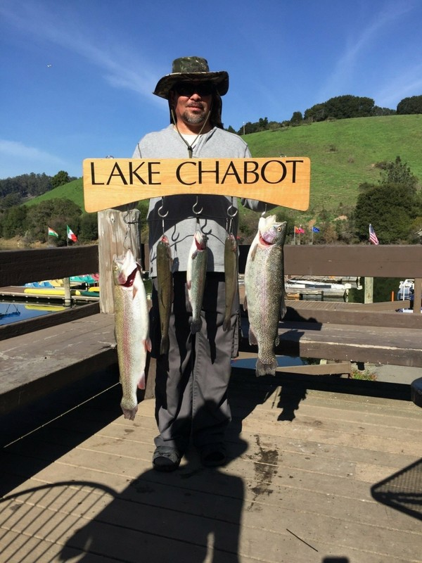 Lake chabot fish report castro valley ca alameda county for East bay fishing report