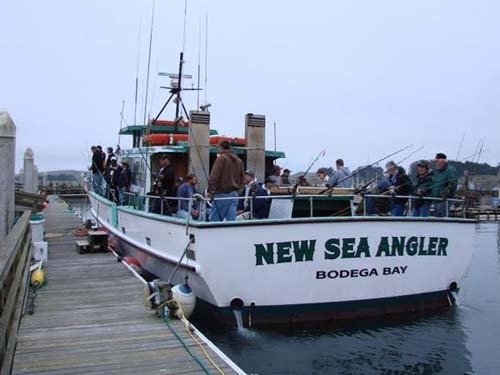 New sea angler limits of rockfish and lingcod to 18 pounds for Bodega bay fishing reports