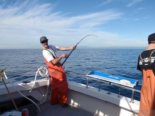 santa cruz sportfishing santa cruz sentinel fish report