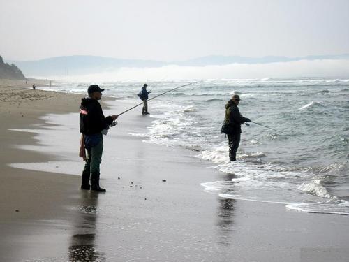Santa cruz sportfishing sentinel fish report for Santa cruz fishing report