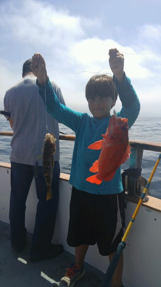 redondo beach sportfishing fish counts