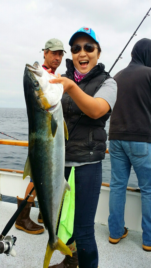 Adult fish counts