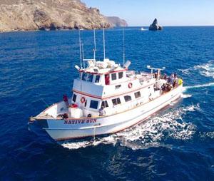 22nd street sportfishing fish counts for Catalina island fishing charters
