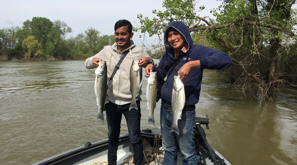Klamath river middle fish report for One day fishing license ca