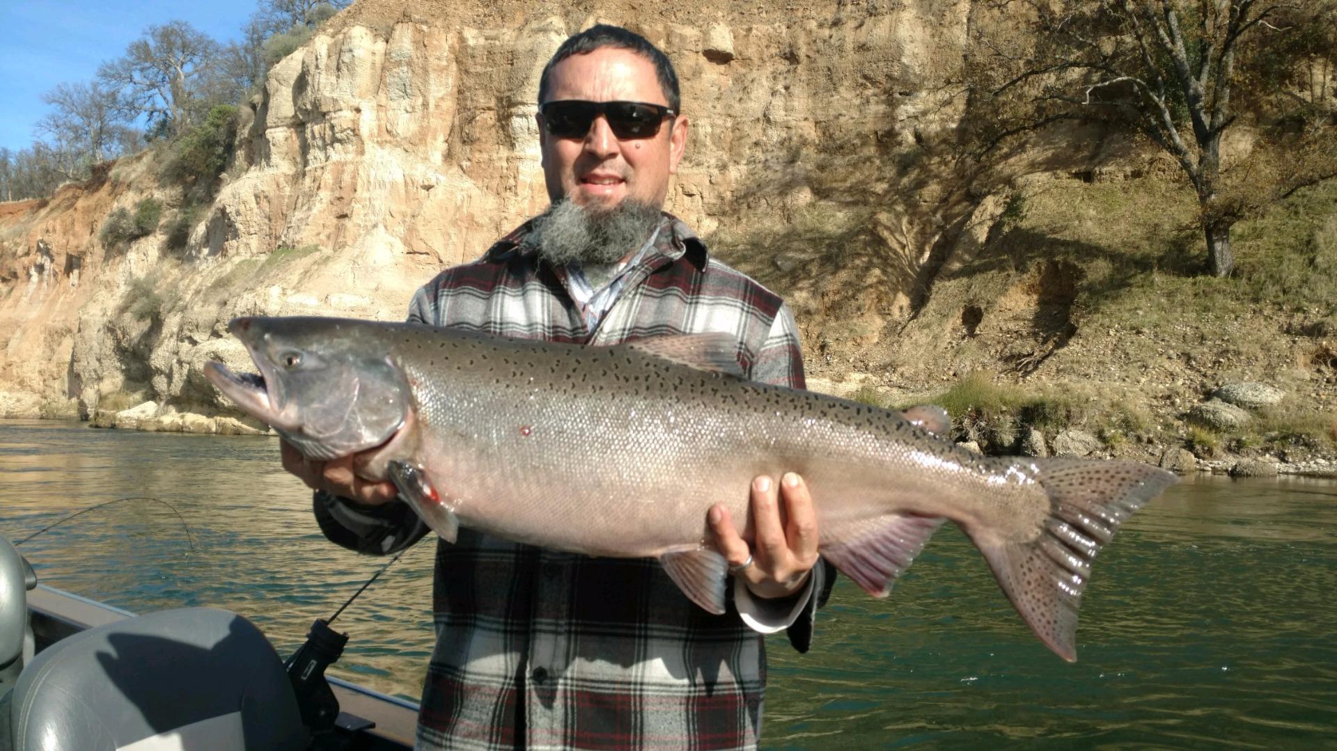 Sacramento river fish report ca for Central oregon fishing report