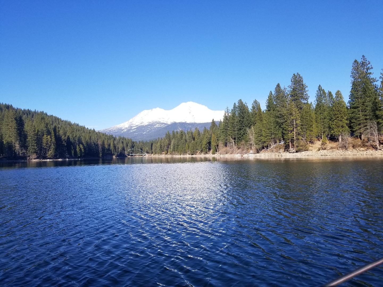 Siskiyou lake fish report mount shatsa ca siskiyou county for Fish lake ca
