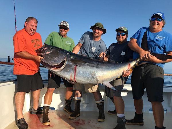Fish report photo