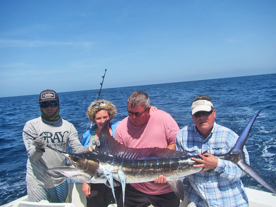 Two Striped Marlin
