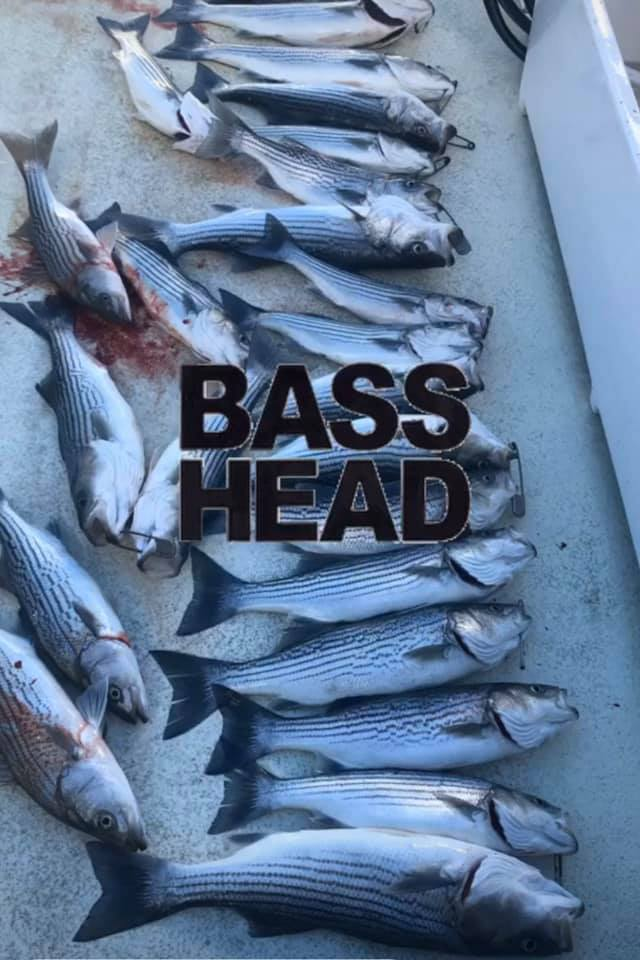 Striped Bass on The Bass Tub