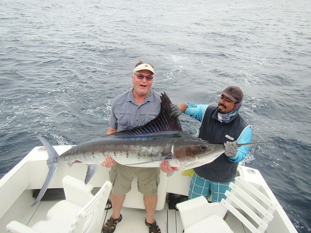 Striped Marlin up to 140 Lbs.