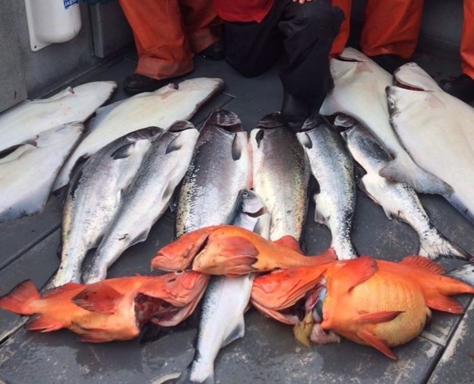 Outbound Alaska Fishing Report