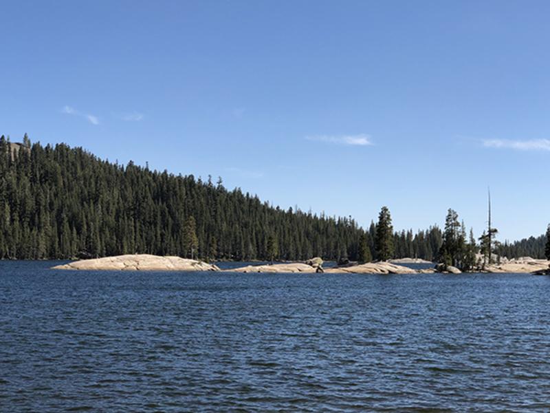 Lake Alpine Fish Report - Lake Alpine, CA (Alpine County)